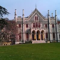De meest 'koninklijke' witte druif van Italië