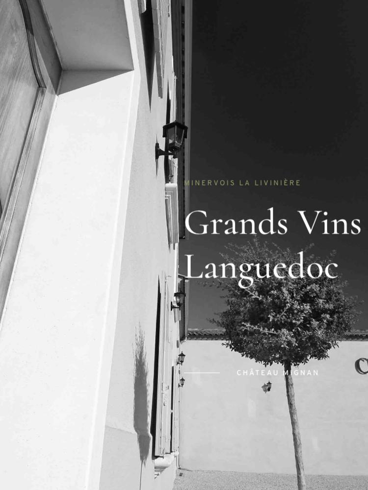 Chateau Mignan Pech Quisou Rouge 2018