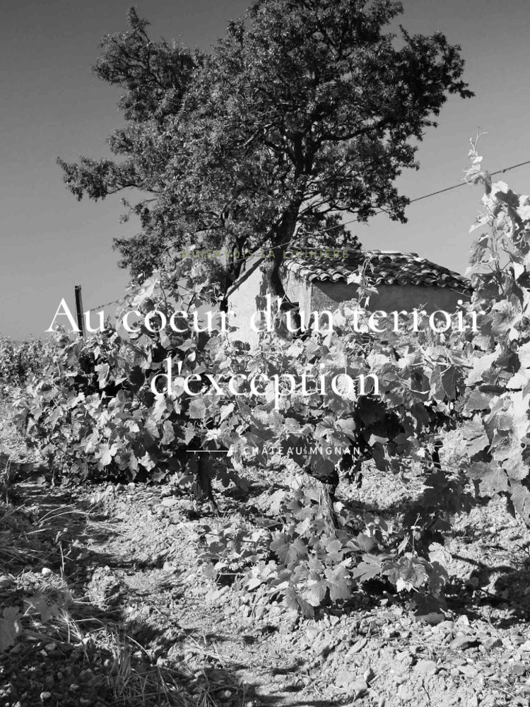 Chateau Mignan les Trois Clochers 2018
