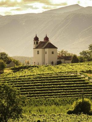 St. Michael Eppan Kalterersee Auslese Sattel 2020