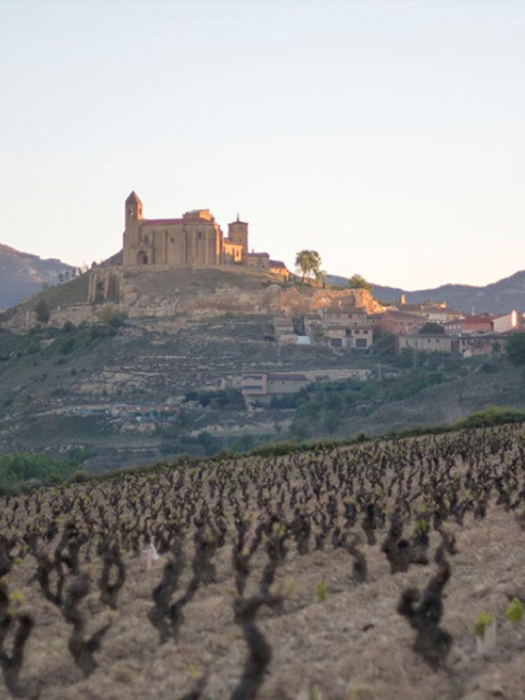 Lopez de Haro Rioja Reserva 2016