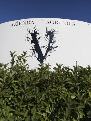 Venea Prisma Pecorino 2020