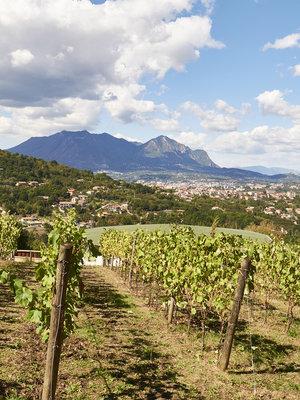 Villa Raiano Aglianico Campania 2018