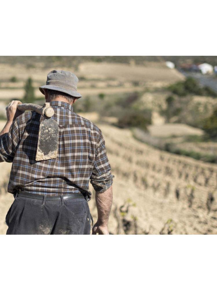 Lopez de Haro Rioja Blanco Sobre Lias 2019