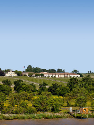 Chateau Montrose Saint-Estephe 2017 2ème Grand Cru Classé en 1855