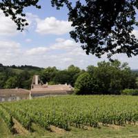Voorverkoop Château Jean Faux 'Grand Vin' 2020