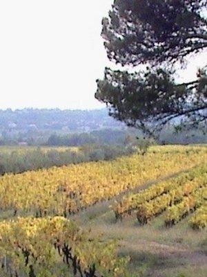 RocheColombe Côtes du Rhône Villages 2020