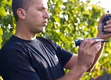 Adir Winery