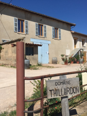 Thillardon Chenas Les Chassignol 2017
