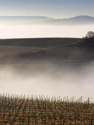 Leclerc Briant Champagne Reserve Brut - Half  0,375L