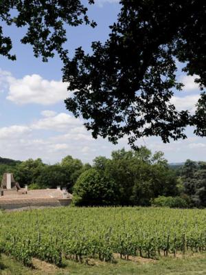 Château Jean Faux Les Pins Francs Blanc 2019