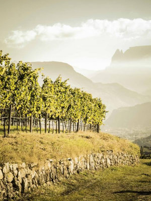 St. Michael Eppan Lago di Caldaro Scelto Sattel 2019