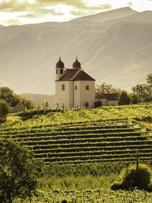 St. Michael Eppan Pinot Noir Riserva 2018