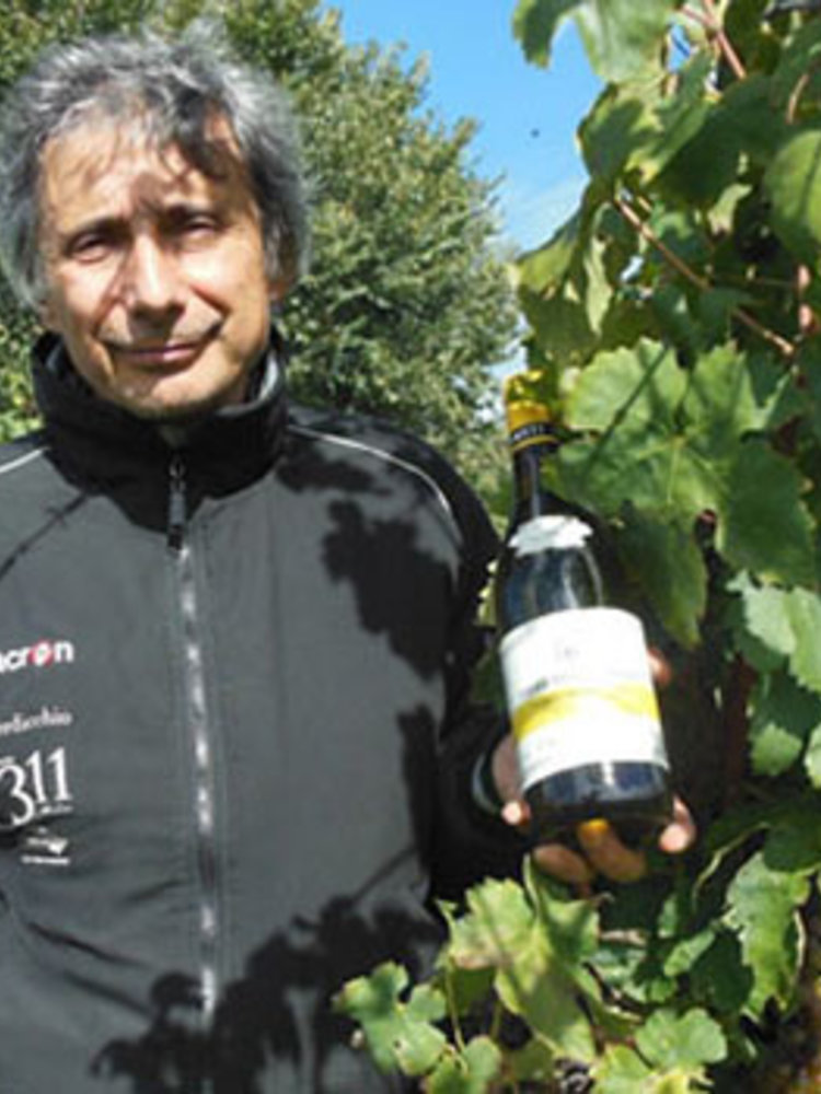 Piersanti Rosso Conero Agreste 2013
