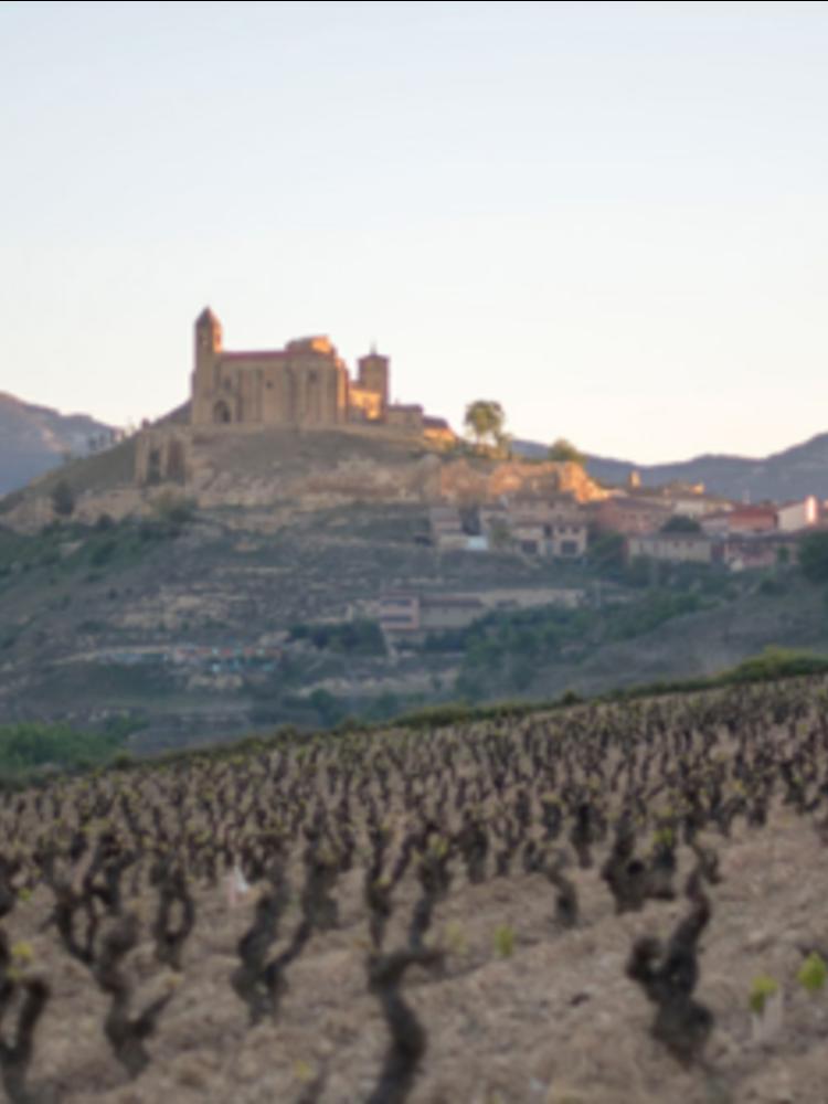 Lopez de Haro Rioja Joven Tempranillo 2019