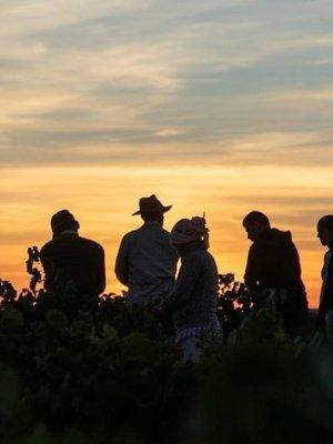Cuatro Rayas Dama del Lago Tempranillo 2018