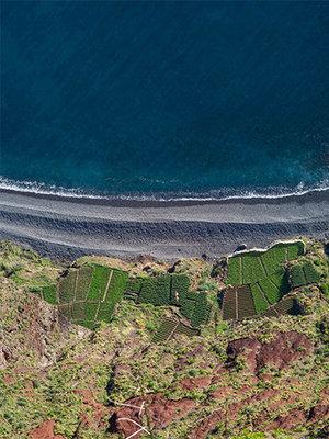 D'Oliveiras Madeira 10 Years Medium Dry - 0,5L