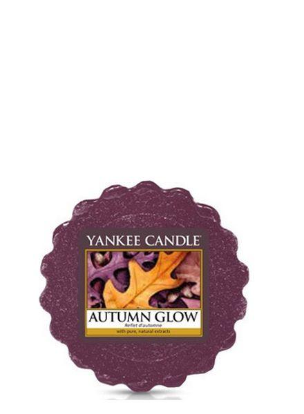 Yankee Candle Yankee Candle Autumn Glow Tart