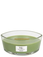 Woodwick Ellipse Evergreen
