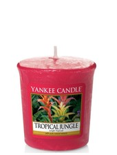 Yankee Candle Tropical Jungle Votive