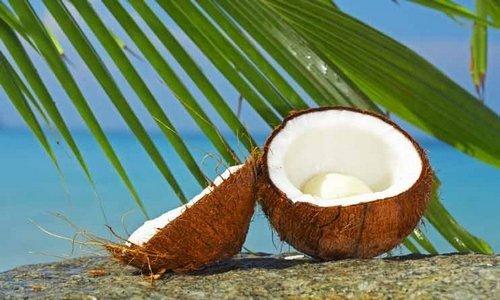 Woodwick Island Coconut
