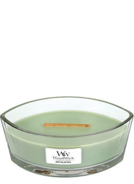 Woodwick Ellipse White Willow Moss
