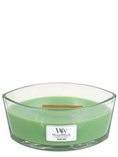 Woodwick Ellipse Palm Leaf