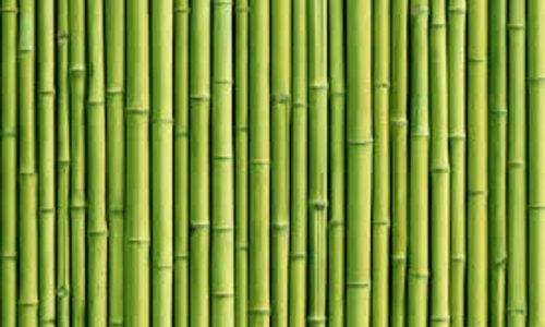 Ashleigh & Burwood Green Bamboo