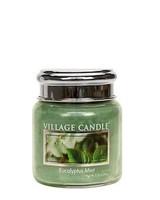 Village Candle Eucalyptus Mint Mini Jar