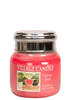 Village Candle Village Candle Summer Slices Small Jar