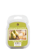 Village Candle Village Candle Ginger Pear Fizz Wax Melt