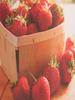 Village Candle Village Candle Fresh Strawberries Votive
