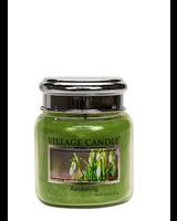 Village Candle Awakening Mini Jar