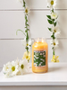 Village Candle Village Candle Dancing Daisies Small Jar