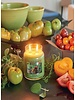 Village Candle Village Candle Tomato Vine Medium Jar