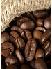 Village Candle Village Candle Coffee Bean Wax Melt