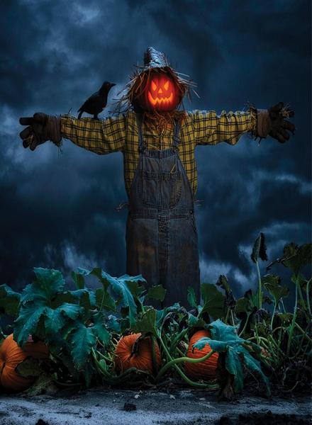 Village Candle Village Candle Pumpkin Scarecrow Large Jar