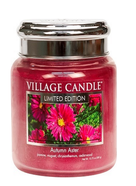 Village Candle Village Candle Autumn Aster Medium Jar