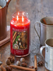 Village Candle Village Candle Christmas Spice Medium Jar