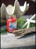 Village Candle Village Candle Coastal Christmas Large Jar