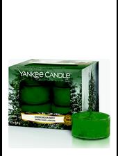 Yankee Candle Evergreen Mist Theelichten