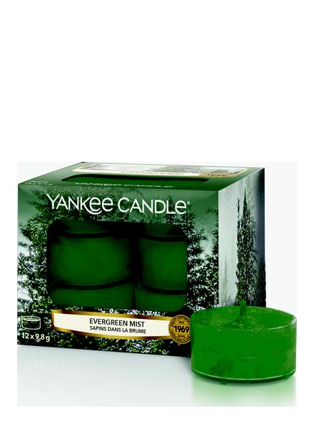 Yankee Candle Yankee Candle Evergreen Mist Theelichten