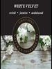 Ashleigh & Burwood Ashleigh & Burwood White Velvet Geurstokjes