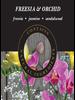 Ashleigh & Burwood Ashleigh & Burwood Freesia & Orchid Geurstokjes
