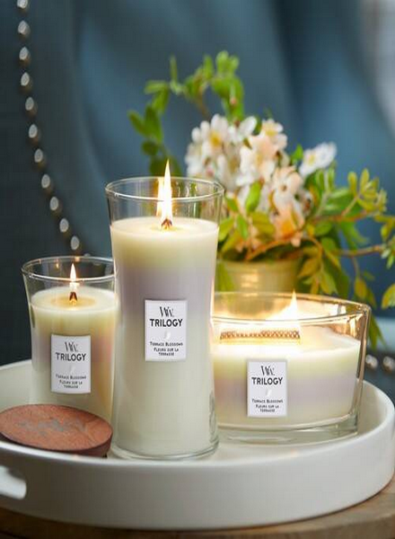 Woodwick Woodwick Terrace Blossoms Trilogy Medium Candle
