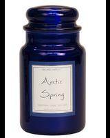 Village Candle Arctic Spring Metallic Large Jar