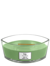 Woodwick Ellipse Hemp & Ivy