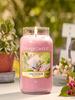 Yankee Candle Yankee Candle Sunny Daydream Small Jar