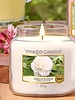 Yankee Candle Yankee Candle Camellia Blossom Votive