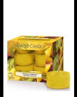 Yankee Candle Tropical Starfruit Theelichten